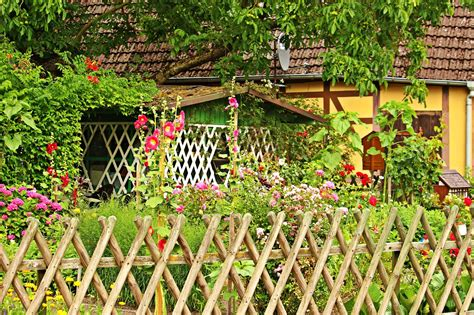 il giardino te giardinaggio fai da te il giardino tabbid