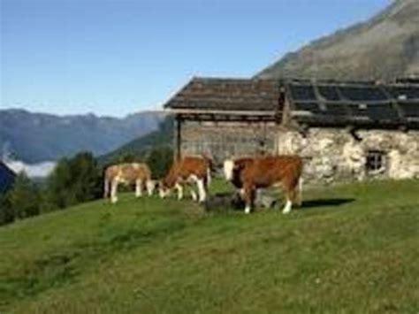 imu capannoni agricoli imu mazzata per stalle e fienili terra nuova