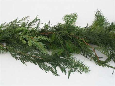 mixed christmas garland douglas fir and cedar christmas