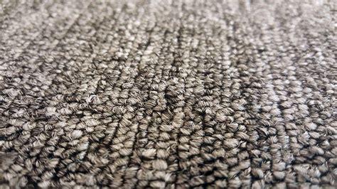 nylon carpet    edwards carpet