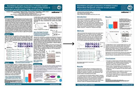 Research Design Template 6 Best Images Of Research Poster Exles Scientific