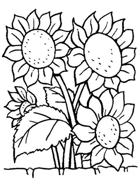 imagenes flores hermosas para colorear ramos de flores para colorear