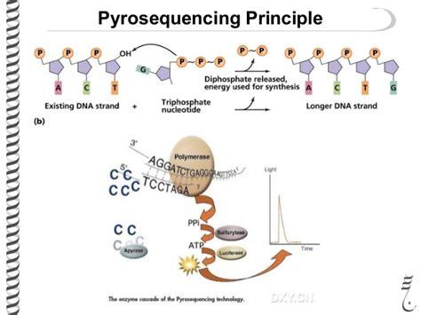 illumina pyrosequencing 485 lec6 sequencing