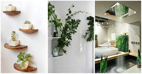 artificial bathroom plants plants in bathroom design ideas home interior design kitchen and bathroom designs