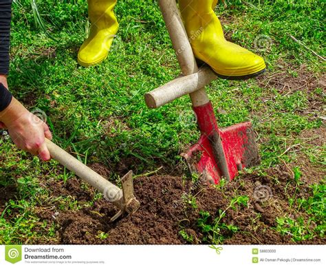 Garden Works by Garden Work Stock Photo Image 58803000
