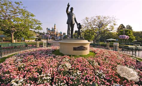 disneyland cast member talks about horticulture job the