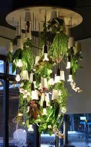 Indoor Hydroponic Herb Garden - grow indoor plants upside down 27 awesome indoor houseplants to