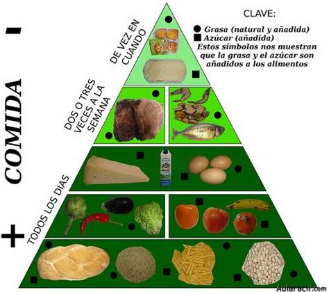 cadena alimenticia pirámide trofica gu 237 as diet 233 ticas h 225 bitos saludables para personas con