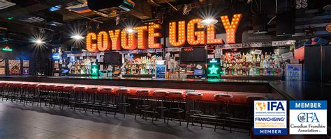 top bar franchises coyote ugly franchising own a franchise coyote ugly saloon