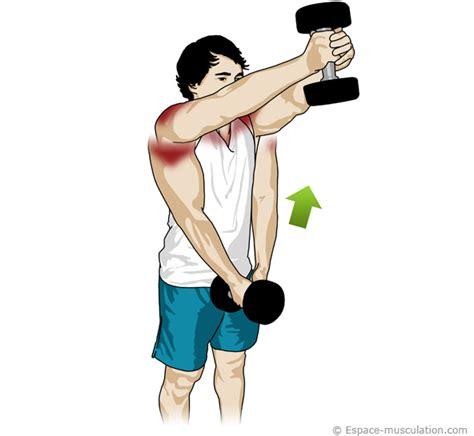 Exercice Abdo Banc Incliné by Epaule D 233 Velopp 233 Halt 232 Re
