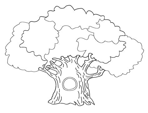 Free Coloring Pages Of A Bare Tree Tree Coloring Page