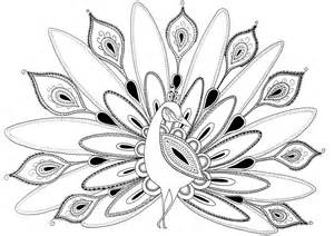 peacock coloring page cool coloring pages for adults peacock az coloring pages
