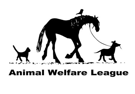 8 Ways To Support Animal Welfare by Animal Welfare League 36 Photos 154 Reviews Animal