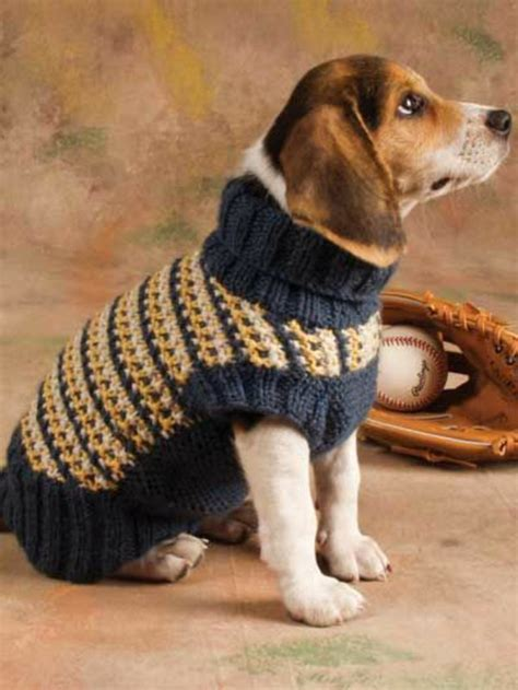 knitting pattern for medium dog coat dog sweater knitting itself or from an old sweater crafts