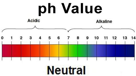 alimenti con ph basico which of the following ph measurements is the weakest acid