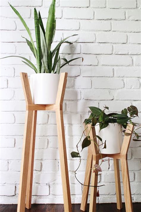indoor plant display ideas of how to display indoor plants harmoniously