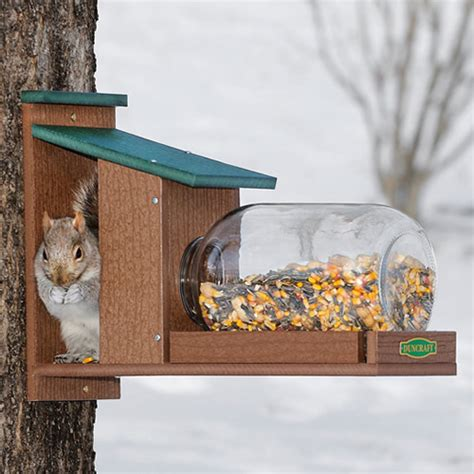 duncraft com duncraft eco squirrel jar feeder