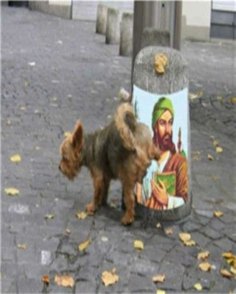 islam and dogs europe muslims declare jihad on all dogs
