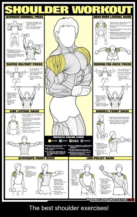 workout diagram the best shoulder exercises ejercicio