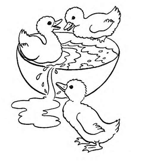 imagenes de animales de granja para colorear dibujos para colorear de animales de la granja holidays oo