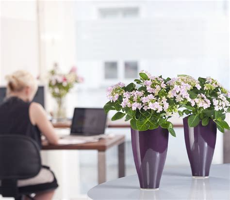 moderne grüne teppiche deko arbeitszimmer modern