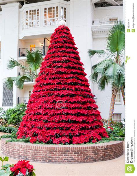 poinsettia christmas tree christmas lights decoration