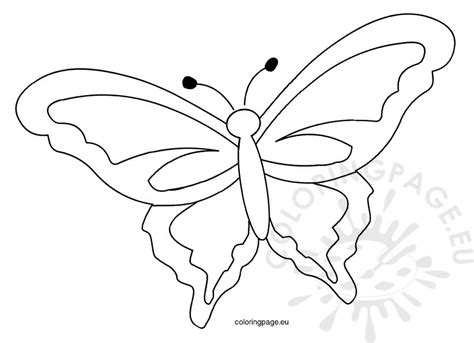 template of butterfly to print printable butterfly template coloring page
