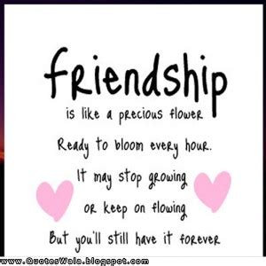 Cute Summer Friendship Quotes