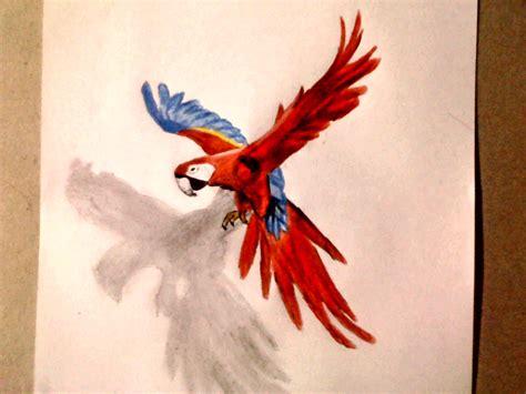 imagenes realistas de animales como dibujar un loro 3d dibujemos tv youtube