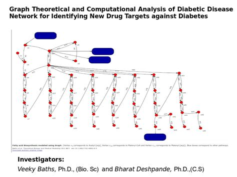 graph theory thesis topics graph theoretical and computational analysis of diabetic