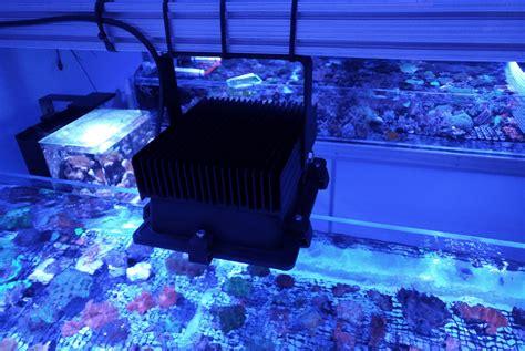 beleuchtung aquarium ripley aquarium of canada beleuchtet orphek orphek