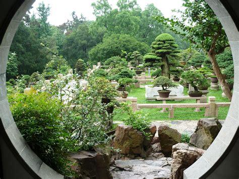 giardini bonsai suzhou giardino di bonsai viaggi vacanze e turismo
