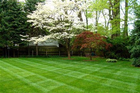 beauch lawn care landscape supply in brighton mi