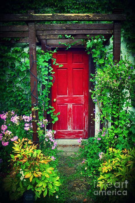 heidi garden secret garden photograph by heidi hermes