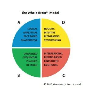 facilitating conflict resolution through whole brain thinking