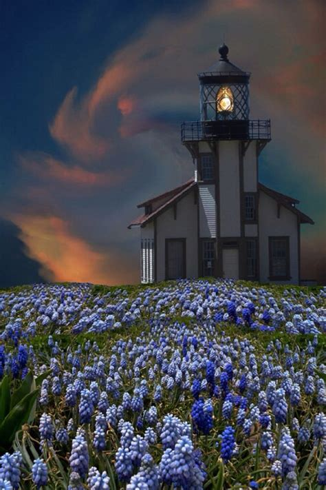 pin by jacqueline on lighthouses