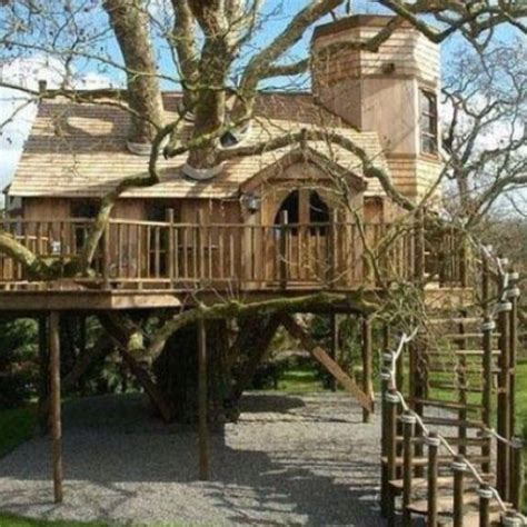 awesome tree houses most awesome treehouse ever tree house pinterest
