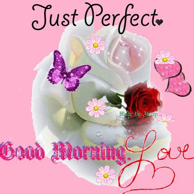 imagenes good morning my love just perfect good morning love pictures photos and