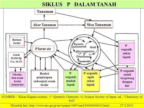 Tanaman P by Bahan Kajian Mk Dasar Ilmu Tanah Fosfat Tanah Www Marno