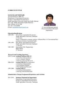 Curriculum Vitae Professor by Sanaullah Noonari Cv Pdf