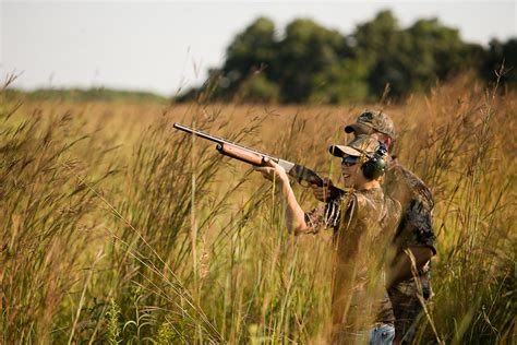 how to a to dove hunt dove pictures to pin on pinsdaddy