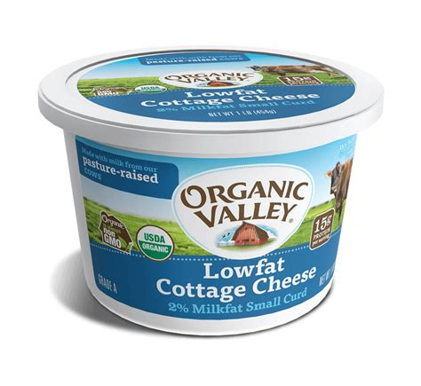 cottage cheese organic lowfat cottage cheese 16 oz