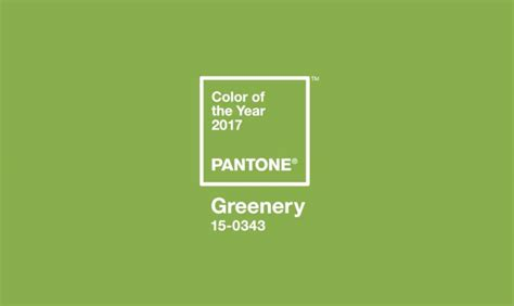 pantone 2017 color of the year color of the year 2017 pantone unveils its color of the