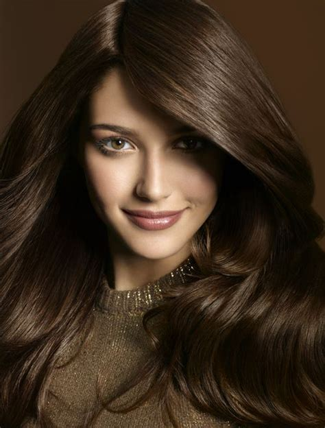 Medium Brownblack 411 best images about hair and makeup on ombre chestnut hair and my hair