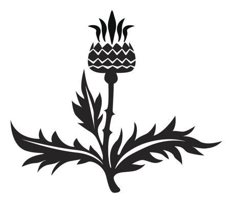 tribal thistle tattoo designs scottish designs that will bring out the warrior in