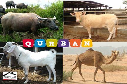49 Teladan Dalam Al Quran persoalan seputar qurban bilik islam