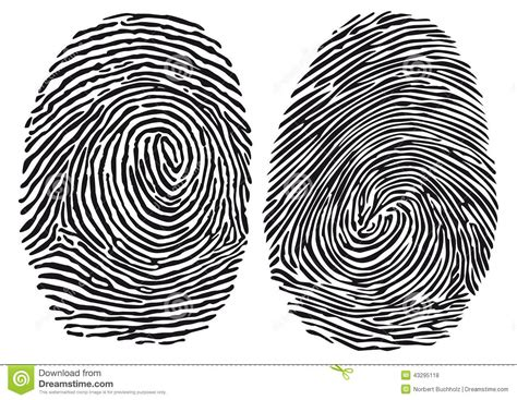 No Fingerprints No Criminal Record Fingerprints Stock Vector Image 43295118