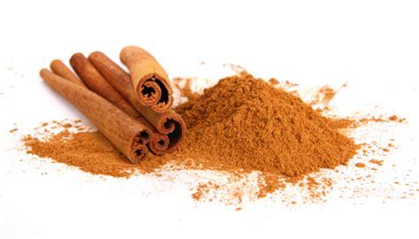 cinnamon color what is the burnt orangish cinnamon color in