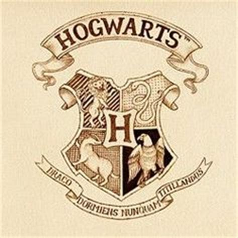 Hogwarts Acceptance Letter Universal Studios Harry Potter Inspired Hagrid S Birthday Cake Harry Potter Inspired Baked Treats And