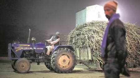 Lu Emergency Kotak india plans to introduce 25 per cent tax on sugar exports